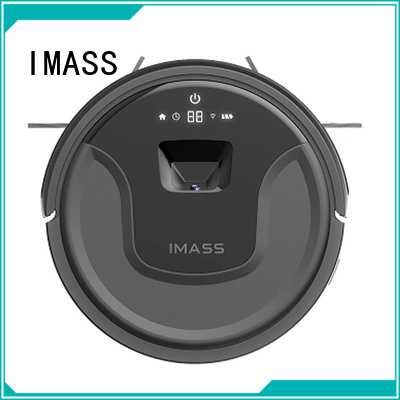 IMASS electric floor cleaners home factory price for women